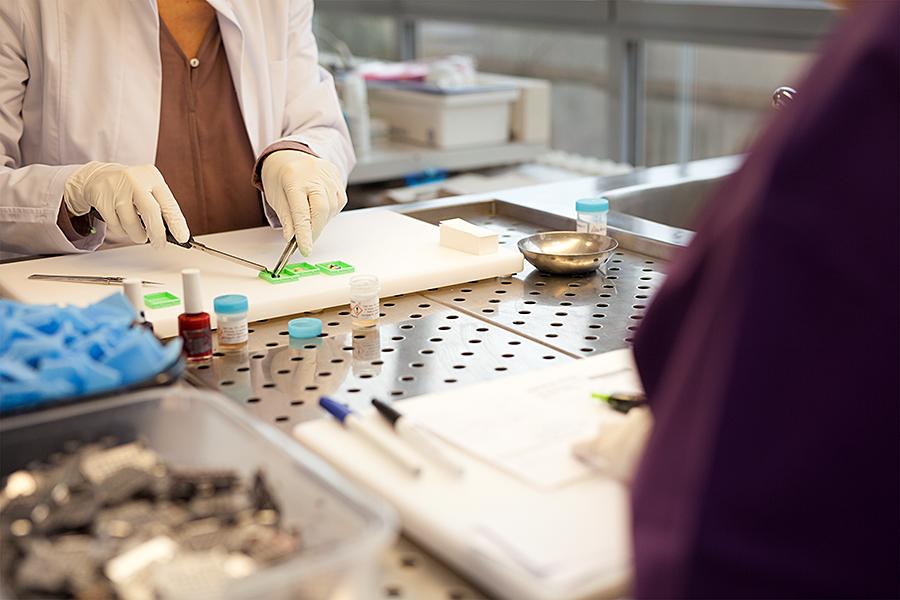 Zytologie Labor Pathologie Businessfotos Industriefotografie